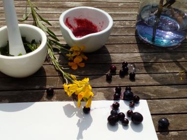 Gartentherapie Heilpflanzen