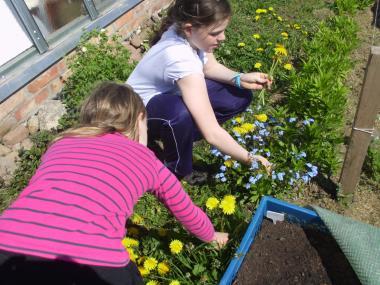 Gartentherapie für Kinder