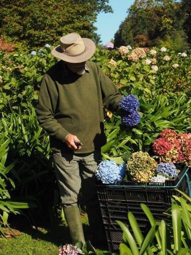 Ausbildung Gartentherapie